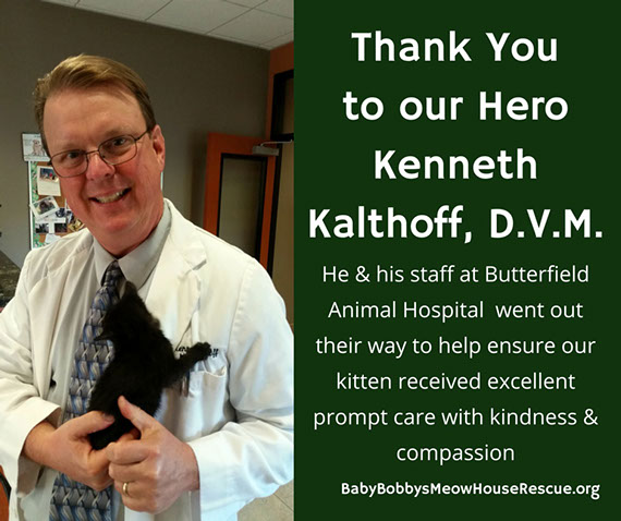 Dr. K. Kalthoff Butterfield Animal Hospital Thank You
